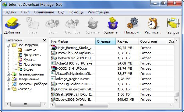 Скачать бесплатно Internet Download Manager 6.06 Build 8 (Rus/Final